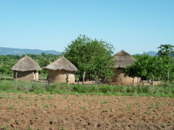 Onze hutten en een stuk land